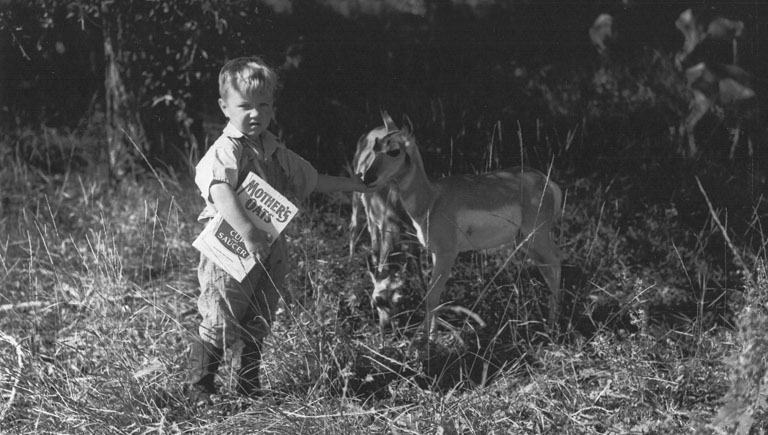 belden-slider1a
