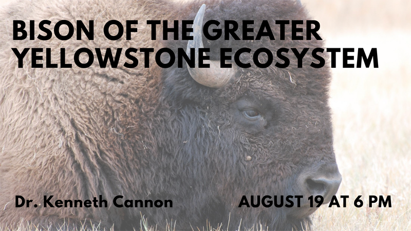 Bison of the Greater Yellowstone Ecosystem